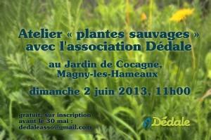AAP-Plantes-flyer-bleu