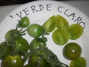 Variété de tomates vertes : VERDE CLARO