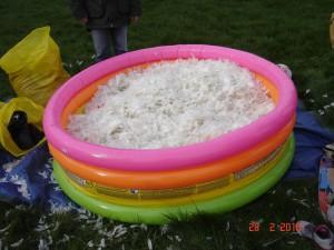 piscine plein