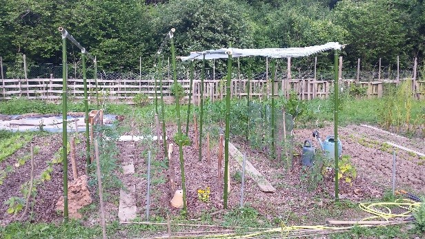 AAP Démarrage de saison au jardin potager 25 et 26 mars à Elancourt 🗓