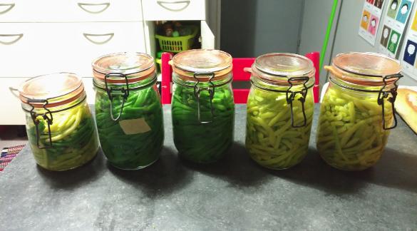 Des bocaux de haricots verts