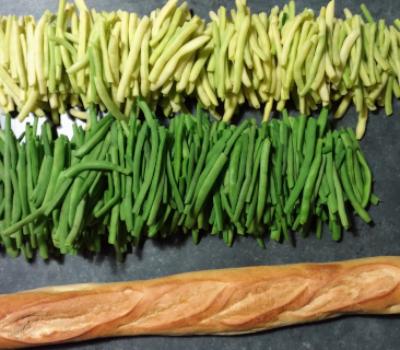 AAP Conserve de légumes et fruits le 23 octobre 14h à Guyancourt 🗓 🗺