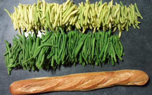 You are currently viewing AAP Conserve de légumes et fruits le 23 octobre 14h à Guyancourt 🗓 🗺